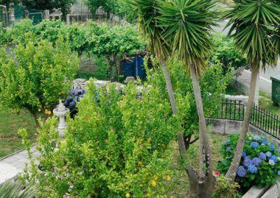 Vista desde terraza 1º piso